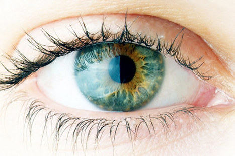 14 Unbelievable Facts About The Human Eye   eSalud   Scoop.it