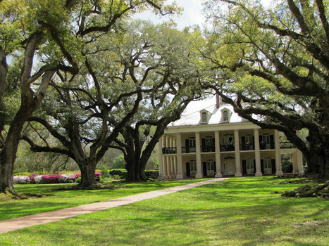 My Front Porch: a postcard from plantation alley... | Oak Alley Plantation: Things to see! | Scoop.it