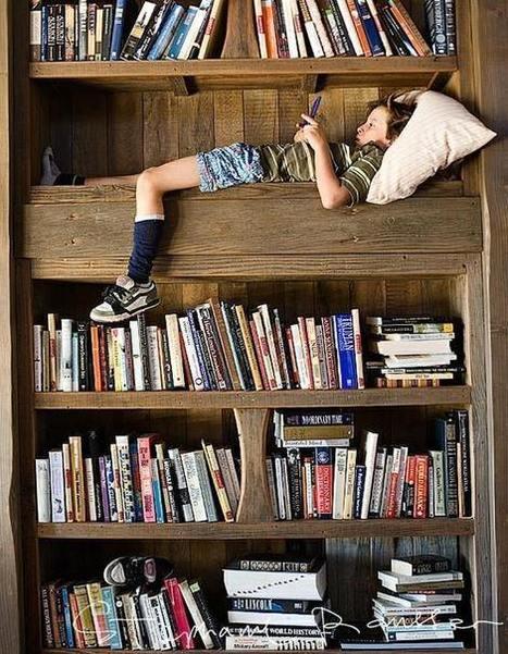 Meuble et lieu culturel : la bibliothèque, extraordinaire | Des livres, des bibliothèques, des librairies... | Scoop.it