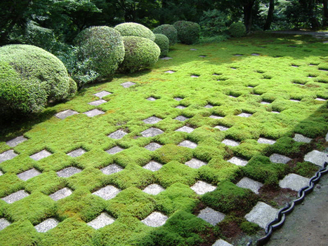 "Recommended Reading: ""Mirei Shigemori: Modernizing the ... 