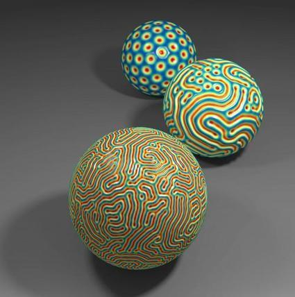 Wrinkle predictions: New mathematical theory may explain patterns in fingerprints, raisins, and microlenses | DataHive | Scoop.it