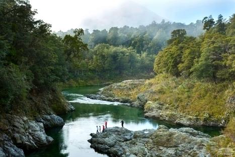 DialAFlight Blog | Pop-up New Zealand excites Hollywood Hobbit fans | 'The Hobbit' Film | Scoop.it