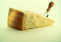 La consommation de Parmesan explose aux Etats-Unis   Infos tourisme en Aveyron   Scoop.it