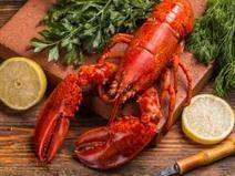 European Union decides it won't Ban Imports of American Lobster | Aquaculture Directory | Aquaculture Directory | Scoop.it