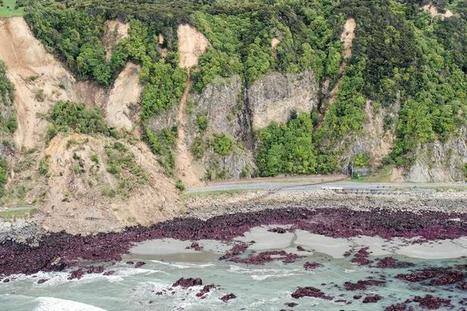Feature Story - Double tectonic shifts may have teamed in New Zealand quake - experts | CATWeek 17.11.2016 | Scoop.it