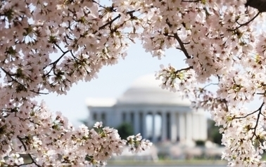 Best Things to Do in Washington D.C. | U.S.News Travel | Stuff to see in Washington DC | Scoop.it