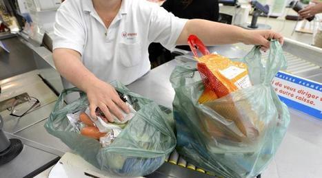 Fin des sacs plastiques. Le décret sur l'interdiction publié fin mars | Des 4 coins du monde | Scoop.it