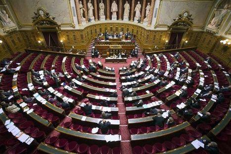 Economie sociale et solidaire: le Sénat adopte le projet de loi - Libération   Actualité législative Entrepreneuriat Social et ESS   Scoop.it