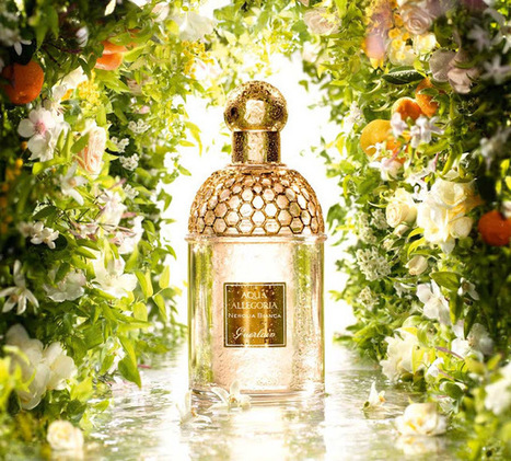 Nerolia Bianca, la nueva Aqua Allegoria de Guerlain | Spain bloggers | Scoop.it