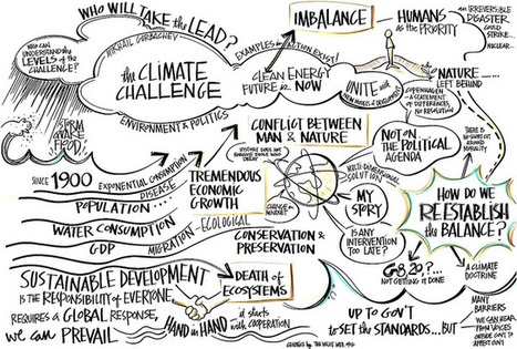 Squaring the circle – bringing ecology and sustainability back into impact investment | Inclusive Business and Impact Investing | Scoop.it