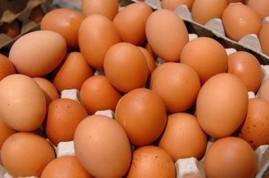 Des œufs...sans œufs ! | Une vie liquide... et du bouillon 2.0 ! | Scoop.it