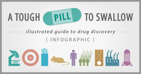 The Drug Discovery INFOGRAPHIC | JP Science Marketing | Biosciences | Scoop.it