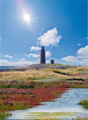 Les îles Halligen | Allemagne tourisme et culture | Scoop.it