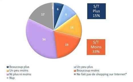 Les Français éprouvent moins de plaisir à faire du shopping sur Internet | Actualité de l'Industrie Agroalimentaire | agro-media.fr | Scoop.it