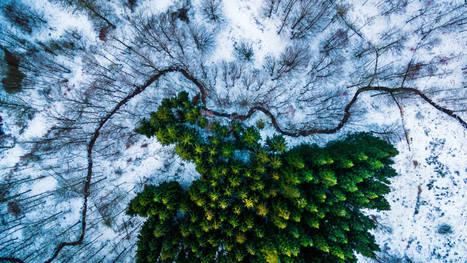 Ces photos prises par des drones prouvent que Yann Arthus-Bertrand a du souci à se faire | Drone | Scoop.it