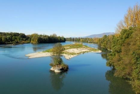 Bassin Rhône-Méditerranée : 150 pesticides différents sont retrouvés dans les rivières   Phytosanitaires et pesticides   Scoop.it