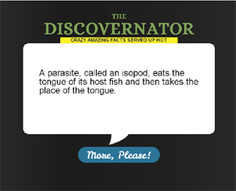 The Discovernator : Discovery News | Grade 6 News You Can Use | Scoop.it