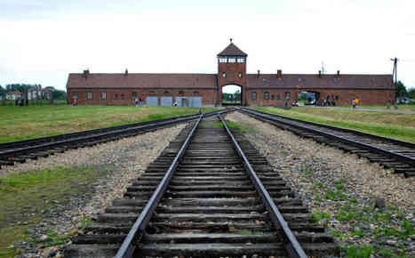 Auschwitz guard admits 'moral guilt' | Criminology and Economic Theory | Scoop.it