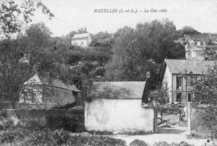 Nazelles-Négron - La Côte-Rôtie | Vins et spiritueux | Scoop.it