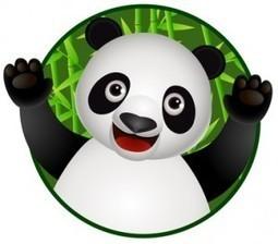 Google panda semble désorienter le référencement naturel | Superkadorseo | Scoop.it