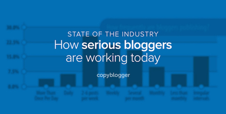 How Do You Compare to Serious Business Bloggers? [Infographic] - Copyblogger | online buyer behavior | Scoop.it