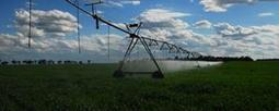 Irrigation Journal - AgWeb | Agriculture | Scoop.it