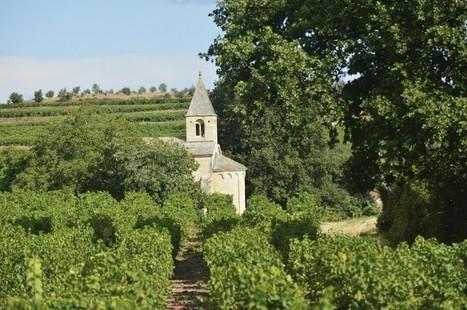 GARD Le rosé gardois a la côte - Objectif Gard | Marketing - Vins et spiritueux | Scoop.it
