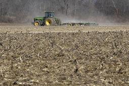 Farm loans keep rising in U.S. grain belt as cash squeeze tightens | Grain du Coteau : News ( corn maize ethanol DDG soybean soymeal wheat livestock beef pigs canadian dollar) | Scoop.it