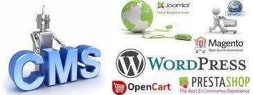 Cms Website Development Company | software | Scoop.it