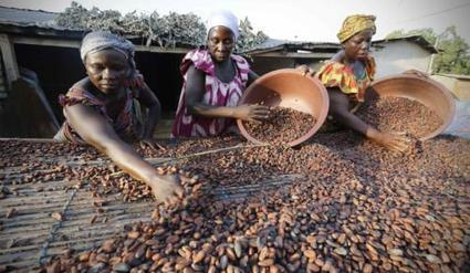 African agriculture is powering economic transformation | CIHEAM Press Review | Scoop.it