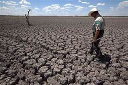Texas hopes to learn lessons from searing drought | Sustainability & Us | Scoop.it