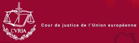 9 Questions-Réponses sur le Droit à l'oubli reconnu par la Cour de Justice Européenne - #Arobasenet | Technologies | Scoop.it