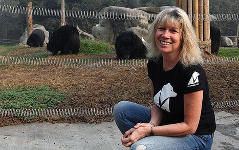 Expat bear rescuer lands two awards - Telegraph | Life on Earth | Scoop.it