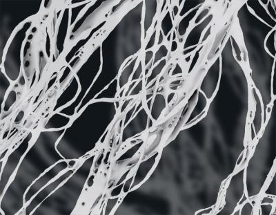 Stigmergy 3.0 | DigitAG& journal | Scoop.it