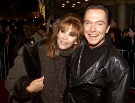 Wife of actor David Cassidy filed for divorce | Marshall & Taylor, P.C. | Celebrities and Family Law Issues | Scoop.it