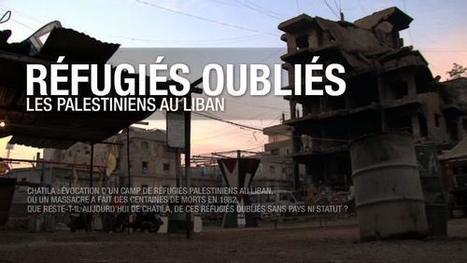 Réfugiés oubliés : les Palestiniens au Liban |  Radio-Canada.ca | L'actualité du webdocumentaire | Scoop.it
