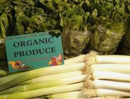 Organic food: no better for you, or the planet ?