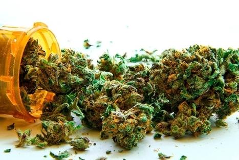 Hallan el mecanismo cerebral que hace que la marihuana provoque hambre | Neurociencia y psicología | Scoop.it