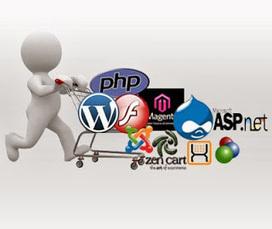 Web Design And Development Services New York: Four Must Ask Questions To Web Portal Development Company | .NET Development Framework | Scoop.it