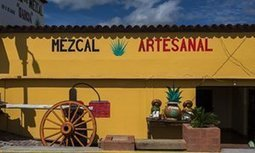 Don't call it mezcal: Mexico may force artisanal producers to use a new name | The Geography of Mexico | Scoop.it