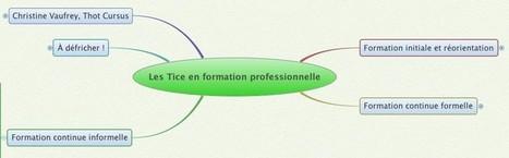 Les TICE en formation professionnelle | TICE & FLE | Scoop.it