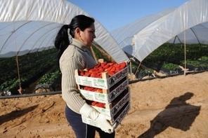 Pas de salaire pour 400 000 femmes d'agriculteurs espagnols | Agricultrices | Scoop.it
