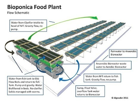 Atlanta's Bioponica Seeks to Close Loop on Hydroponic and Aquaponic Farming | Vertical Farm - Food Factory | Scoop.it