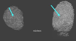 (ES) (EN) - Glosario de Biometría | biometria.gov.ar | Glossarissimo! | Scoop.it