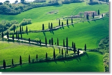 Fabulous great vacation ideas in Tuscany including advice about   places to visit in Siena  for romantic getaways. There is great information here. | Romantic places to visit | Scoop.it