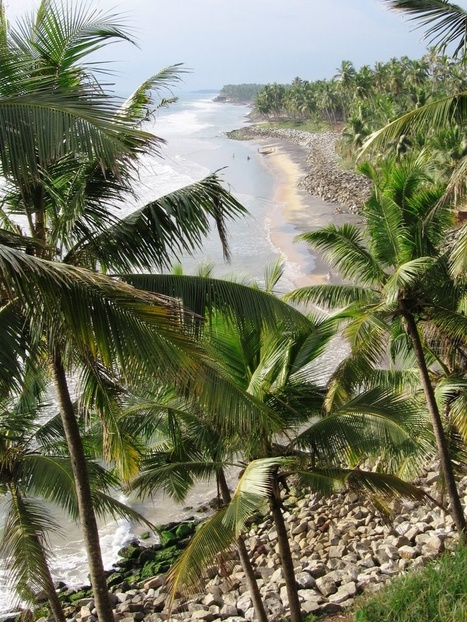 Kerala Tour Packages, Best Kerala holiday Deals - Travelholi.com | packages kerala tour | Scoop.it