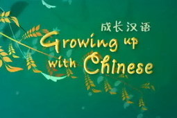 Learn to Speak Chinese - Free Mandarin Video Lessons   New Zealand Chinese Family History   Scoop.it