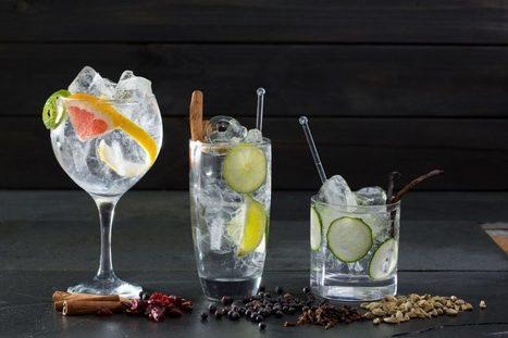 Gin tonic, combinaciones con especias - Cocina y Vino | GinTonics | Scoop.it