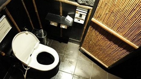 Facebook, Twitter taking up toilet time | Digital Culture David Hughes | Scoop.it