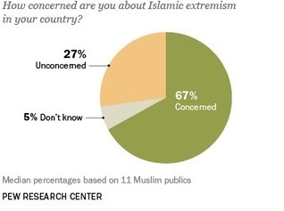 Muslim Publics Share Concerns about Extremist Groups - The Pew Global Attitudes Project | religious impact | Scoop.it